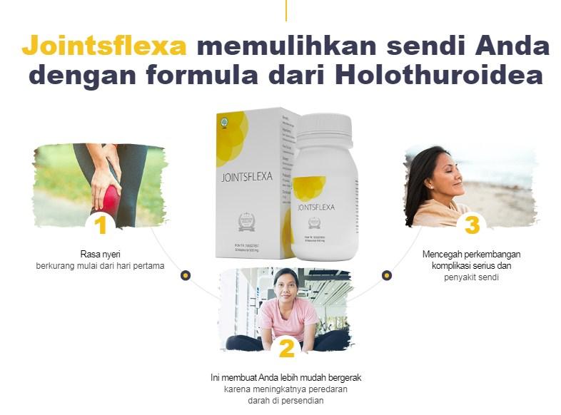 Jointsflexa